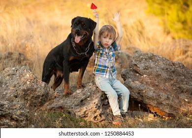best friends boy and big dog breed Rottweiler for a walk sitting together