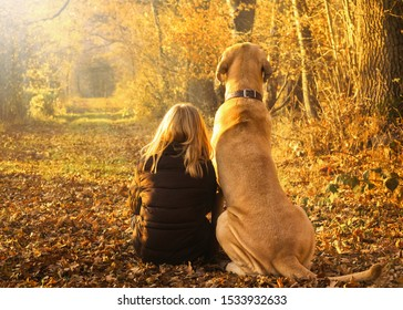 Best friends child and dog sit happily together in the bright autumn forest