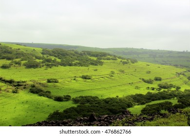 Best Landscape in Oman - Salalah & Khareef