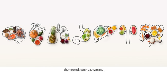Best menu for healthy body. Collage with outlines of human internal organs and wholesome foods on white background, panorama - Shutterstock ID 1679266360