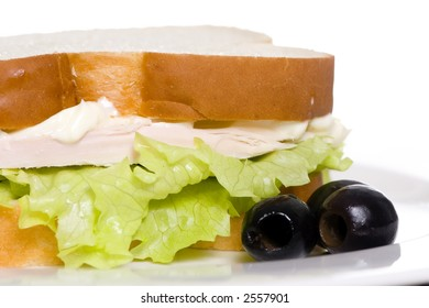 The best part of the holdiays is leftovers...turkey sandwiches