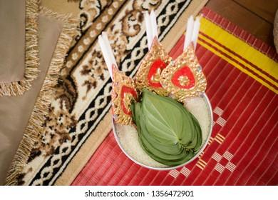 betel leaf betel leaves