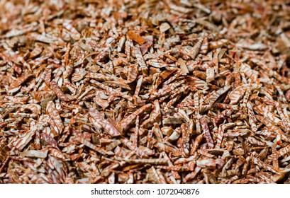 betel nut supari cut finely cut for sale in super market