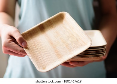Betel palm leaf plate (Biodegradable plate, Compostable plate or Eco friendly disposable plate) holding by hand