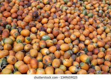 Betel-nuts pattern in Myanmar, Background of Betel-nuts