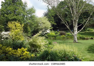 Beth chatto garden, beautiful, green, UK