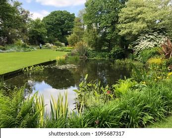 The Beth Chatto garden, Colchester, England, April 2018