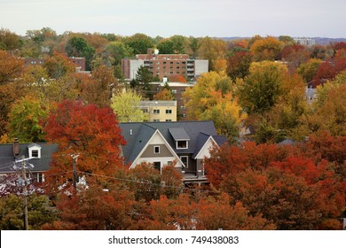 Bethesda, MD - November 5, 2017: Fall foliage peaks in a neighborhood in Montgomery County.