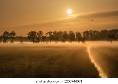 Betuwe, Gelderland, the Netherlands - May 3, 2018 : Small stream in a misty grass field in the Betuwe on an early morning in spring
