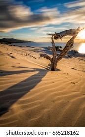 Between the dunes, Piscinas beach