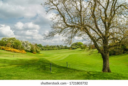 BEVERLEY, UK - MAY 03, 2020:  Golf course now devoid of people due to Corona virus outbreak and shut down of sport facilities on May o3, 2020 in Beverley, Yorkshire, UK.