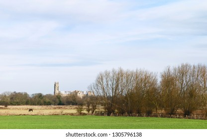 Beverley, Yorkshire, UK. The ancient minster (church) as viewed from across agricultural landscape with trees on bright winter morning in Beverley, Yorkshire, UK.