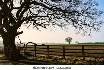 Beverley, Yorkshire, UK. View across agricultural landscape on fine misty spring morning under blue sky in Beverley, Yorkshire, UK.