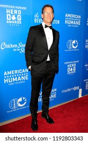 BEVERLY HILLS - SEP 29: James Denton at the 2018 American Humane Hero Dog Awards at The Beverly Hilton Hotel on September 29, 2018 in Beverly Hills, California