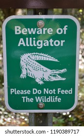 Beware of alligators and do not feed wildlife on green sign in state park showing the importance of protecting wild species
