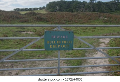 """""""Beware, Bull in Field, Keep Out"""" Sign Attached to a Galvanised Metal Farm Gate on the Island of Tresco in the Isles of Scilly, England, UK"""