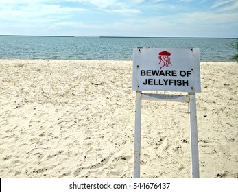 Beware of Jellyfish Sinage on a sunny day at the beach