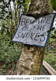 Beware of the snakes