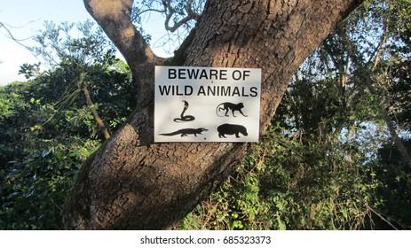 Beware of wilde animals