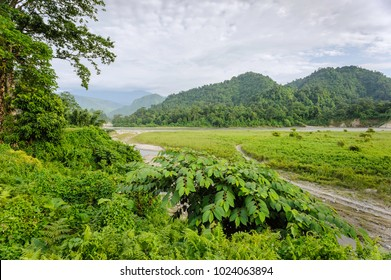 Bhalukpong, Arunachal Pradesh, India. View across the forested landscape towards foothills of Himalayas and Kameng river, Bhalukpong, Arunachal Pradesh, India.