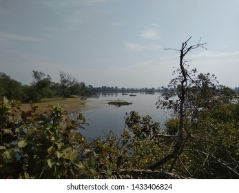 Bharatpur Bird Sanctuary is a serene place for bird lovers and bird watchers. Take a short family trip to Bharatpur Bird Sanctuary and see lots of Indian and migratory birds.