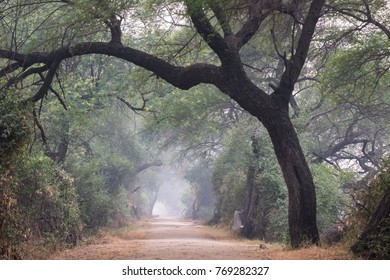 Bharatpur, India, Asia