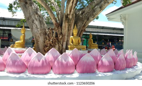 bhudda in lotus under tree