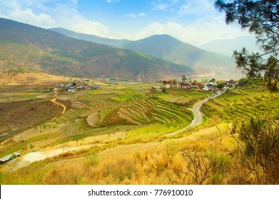 Bhutan, Punakha, panoramic view of valley from Lobesa towards Wangdue Phodrang. Rice crops in the spring time. Nature landscape.