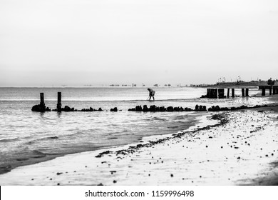 Bibione (Italy) - July 16th 2018: Black and white early morning view of the beach  in Bibione, a town on the Adriatic A person in the background is fishing out scallops