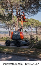 Bibione,Italy - March 08 2018 : Workers and machinery at tree pruning before the start of the tourist season.