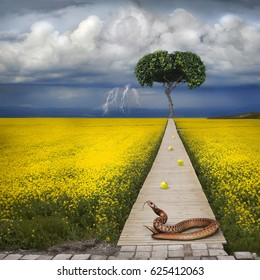 Biblical apple of temptation and snake. To the apple tree there is a narrow path. In the background, a thunderous beautiful sky.