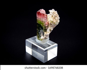 Bicolour tourmaline crystal mineral on black background