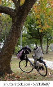 bicycle in Autmn park