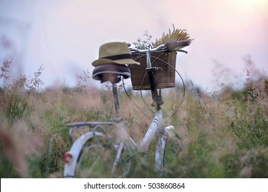 Bicycle Basket in medow field with soft foreground of grasses and pastel color