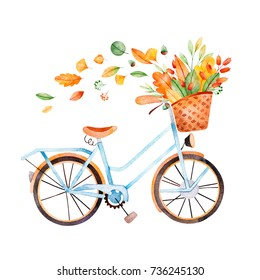 Bicycle with bouquet of fall leaves, acorns,berries in basket..Autumn illustration for your design.Perfect for wedding,invitations,template card,patterns etc