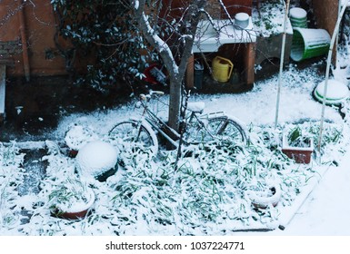 Bicycle covered with snow in a garden.