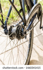 Bicycle - detail of gear and chain of modern bike