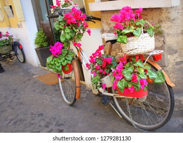 Bicycle with flowers parked on the street in Rome, Italy. Cozy old street of Rome. Architecture and landmark of Rome. Postcard of Rome and Italy