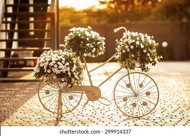 bicycle with flowers at sunset