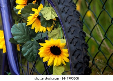 Bicycle with its front wheel adorned with yellow flowers