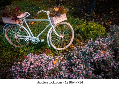 Bicycle in the garden with flowers box