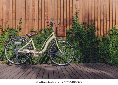 Bicycle with greenery leaves on wooden wall in the garden