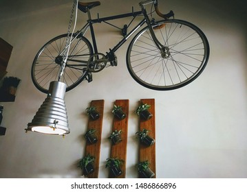 Bicycle hanged on a wall with a hanging lamp and vertical plants on the wall. Designed wall.