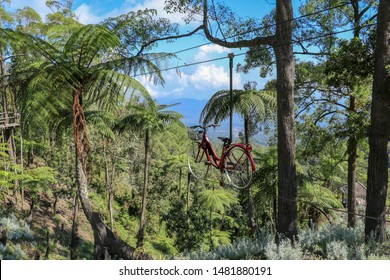 Bicycle hanging on a hanging steel rope in a tropical jungle. Adrenaline track cycling through trees in a rainforest on Bali island. Eco Flyer Bike Zipline Adventure.