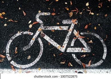 Bicycle lane or path and white bike symbol. Bicycle path and autumn fallen leafs on lane. Bike lane or bicycle road sign on path. Bicycle sign on black lane in the park. Bike symbol on cycle path.