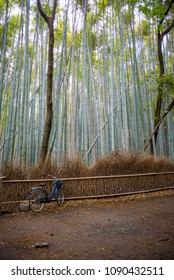 bicycle leaning against a fence surrounded by bamboo