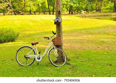 Bicycle in the nature park on holiday in the morning scene is an activity for exercise to be biked in the garden with lake view among urban city in Bangkok, Thailand
