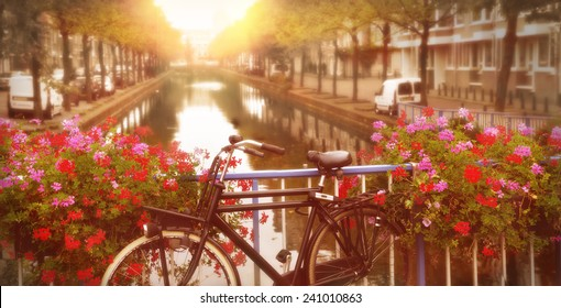 bicycle on a bridge with blooming flowers in TheHague, netherlands