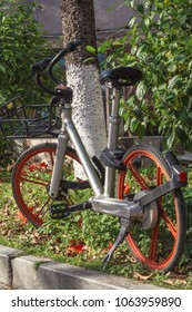 A bicycle on the roadside under a beautiful tree in one of the parks of the Chinese city