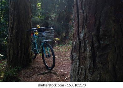 Bicycle in outdoor  park , bikepacking and outdoor concept.